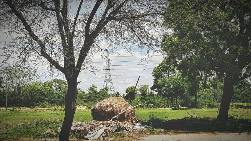 The Great Outdoors - 2015 EyeEm Awards Hanging Out Taking Photos Never Seen Before , ☺ EyeEm Best Shots - Nature The Moment - 2015 EyeEm Awards Beautiful Nature Rural Scenes Eyeem Photography Eyeem @sira tumakuru