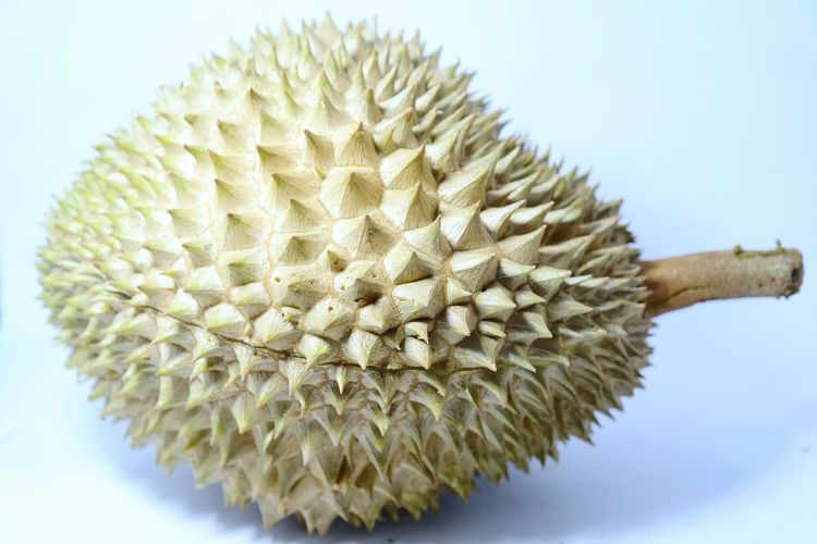 Close-up of durian on white background