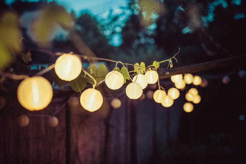 Low angle view of illuminated light bulbs hanging on tree