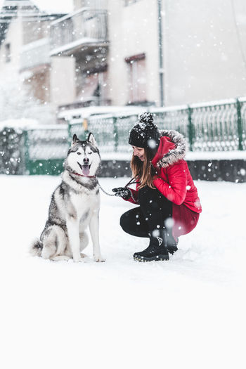 Husky Winter Snow Cold Temperature Real People Pets Mammal One Animal Clothing Domestic Domestic Animals Warm Clothing Canine Dog Vertebrate Women Females Full Length Snowing Outdoors