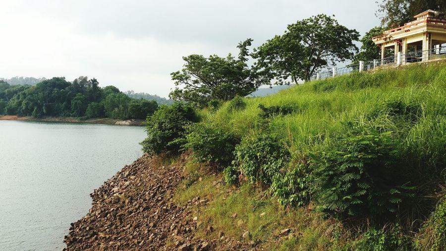 Taking Photos Kerala Thiruvananthapuram Kerala India Incredible India Nature Enjoying Life Dam Being A Tourist Enjoying Life