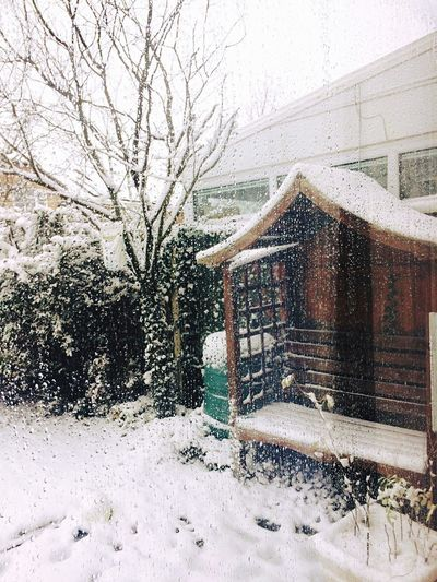 Let it snow Snow Winter Cold Temperature Weather House Snowing Building Exterior First Eyeem Photo