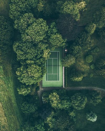 Architecture Green Color Tree House Built_Structure Building Exterior Growth Day Plant Outdoors Ivy No People Nature Drone  Dronephotography Tenniscourt Tennis 🎾 Fresh On Market 2017