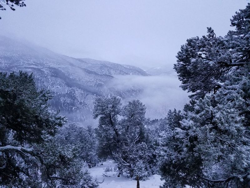 Working in a winter wonderland! Snow Outdoors Beauty In Nature Winterscapes Mountain Life Its Cold Outside