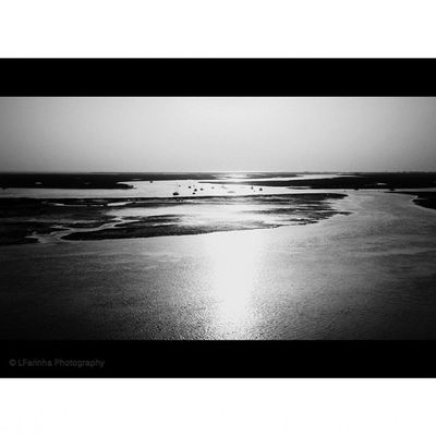 The view over the Ria Formosa - http://www.facebook.com/LFarinhaPhotography Rsa_nature_leaves RiaFormosa Faro Infaro naturelovers landscapes nature nature_perfection sunset algarve ig_portugal_ ig_algarve_ iggersportugal portugal_de_sonho Portugal algarve p3top p3 desculpashamuitas ig_europe ig_worldclub icu_portugal water_perfection view gallery_of_bw instalike instagood instaphoto LFarinhaPhotography photography