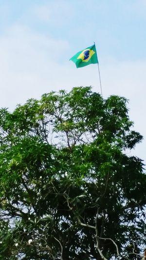Brazil Supporter Vanuatu