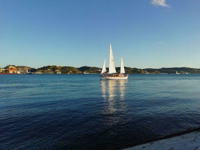 Sails White