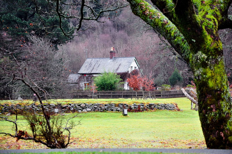 Ireland🍀 Ireland Ireland Landscapes Ireland Countryside Countryside Countryside Life Autumn Autumn Colors Fall Colors