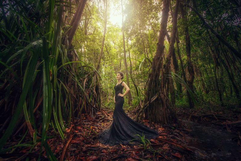 Be. Ready. Dress Beautiful Woman Tree One Person Fashion Model Outdoors Alone