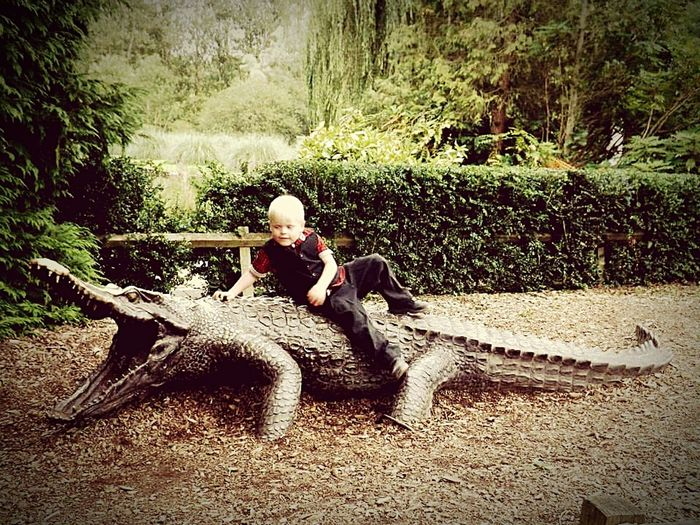 Done That. Boy on crocodile. Day Outdoors Fake Crocodile. Funny Day Nature Happiness Smiling Childhood Innocence Littlethings My Boy ❤