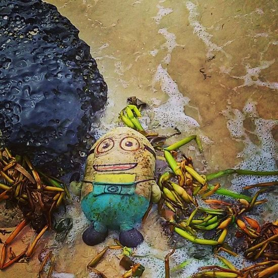 Beachside treasure finds that can never fail to brighten up your mind, lighten up your soul and widen out that smile... :) Beach Treasure Despicableme Minion  smile love @despicableme
