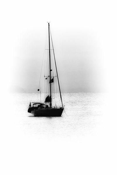Sailing Boat Black & White Black And White Blackandwhite Blackandwhite Photography Bnw Boat Bw Bw_collection Idyllic Journey Leisure Activity Lifestyles Mast Monochromatic Monochrome Ocean Sailboat Sailer Sailing Sailing Boat Sea Ship Tranquil Scene Tranquility Water