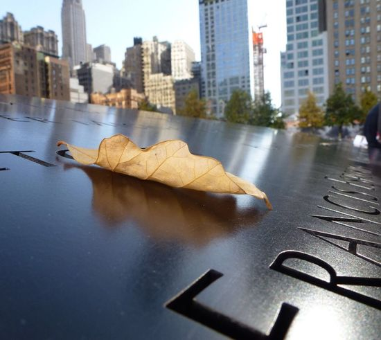 Alone In The Big City Taking Picture At Zero Ground Zero Ground Scene 911 World Trade Center Memorial Nothing Left But Memories Maple Leaf At The Zero Ground In New York City, USA Big Apple View NYC Photography United States Of America USA Travel Destinations