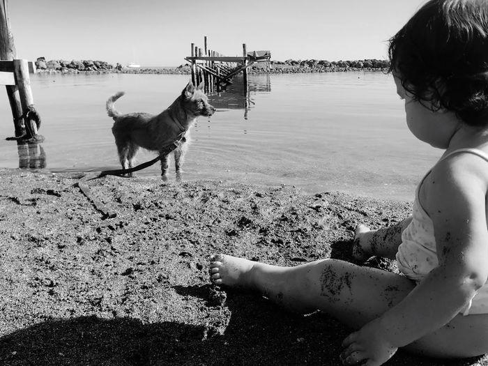 Little girl with dog on beach against sky
