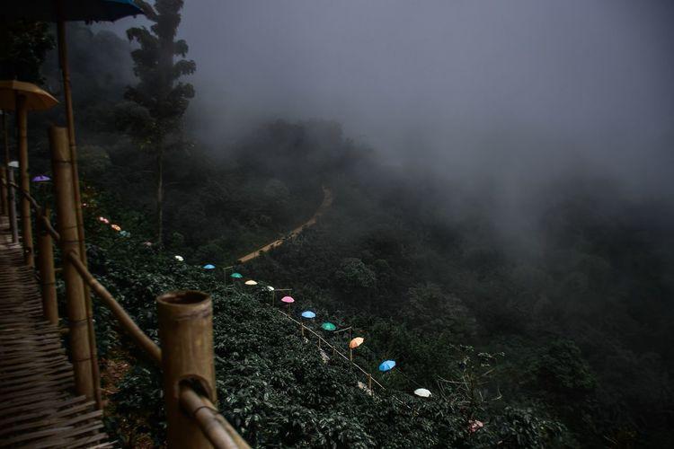 Footbridge on mountain during foggy weather
