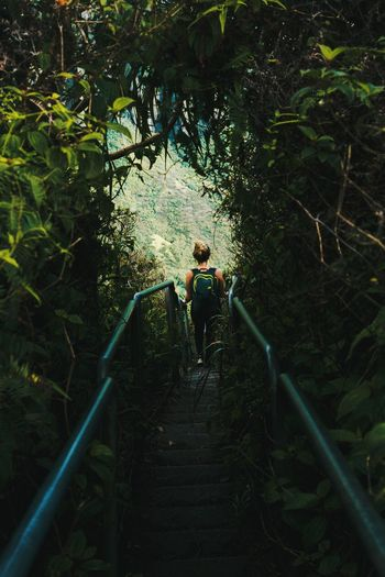 Woman walking on stairs in forest