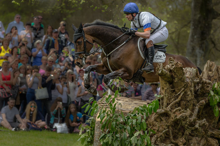 Well clear Competitive Sport Cross Country Eventing Field Focus On Foreground Grass Nature Three Day Event Working Animal The Great Outdoors - 2016 EyeEm Awards