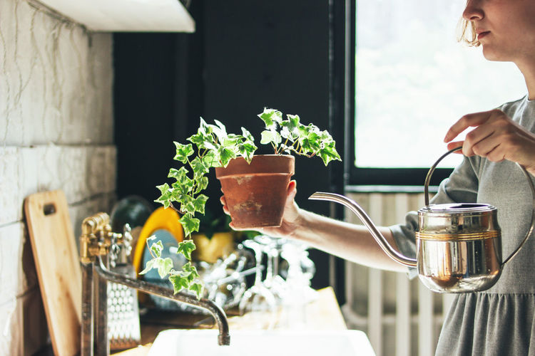 Midsection of woman watering potted plant