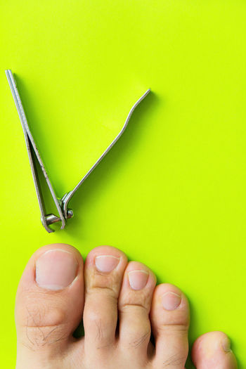 cutting your toenails concept Cutting Green Green Color Healthcare Nail Clippers Beauty And Health Close-up Day Healthcare And Medicine Healthy Healthy Lifestyle Human Body Part Human Hand One Person People Toenails