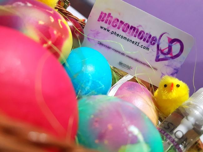 Happy Easter Bulgaria ;) Blue Close-up Colorful Colors Day Easter Easter Eggs Egg Eggs Focus On Foreground Multi Colored No People Pheromone Pheromones Pheromonexs Selective Focus Variation