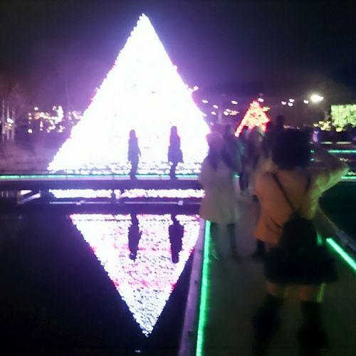 あしかがフラワーパーク へ 行って来ました とっても 綺麗 だった♡ただ 車 で行ったので… 渋滞 で三時間… 行くなら 電車 を お勧め しまーす笑 美里 Xmas イルミネーション イルミネーション2015-2016 Japanese Shrine 足利 写っているのは私じゃないょ