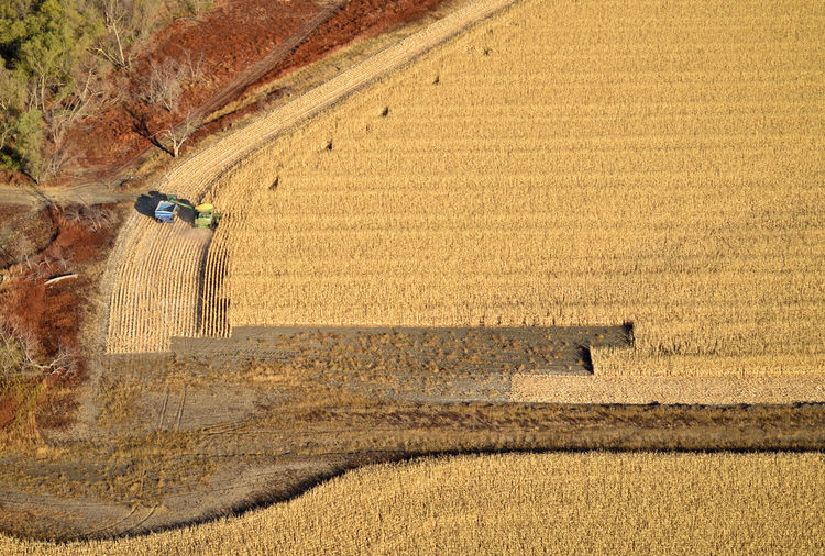 Agriculture Farm Field Harvesting Agricultural Machinery Crop  Rural Scene Farming Corn Combine Harvester Tractor Aerial View Aerial Aerial Photography Environment Energy Ethanol Cereal Plant Land Vehicle Food Grain Harvest Feed  Land High Angle View