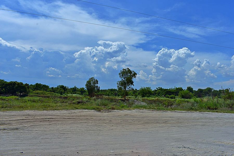 passing through Beach Beauty In Nature Cloud - Sky Day Environment Green Color Growth Land Nature No People Non-urban Scene Outdoors Plant Scenics - Nature Sky Tranquil Scene Tranquility Tree Tropical Tree Water