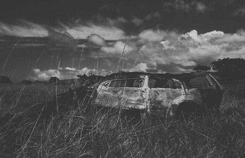 Car abandoned