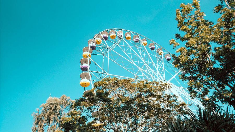 Wheel of fate Ferris Wheel Amusement Park Ride Clear Sky Big Wheel Arts Culture And Entertainment Amusement Park Blue Tree Circle Sky Large