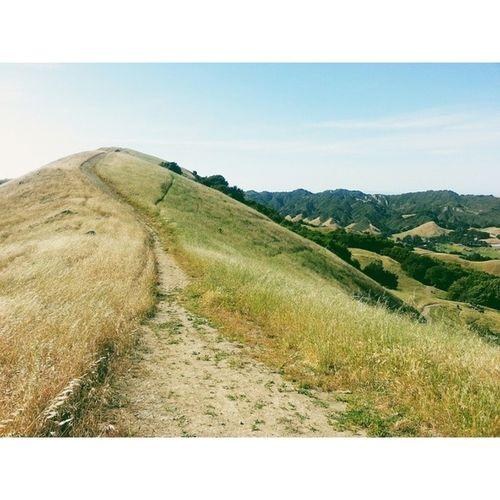 Rocky Ridge View Trail. VSCO Vscocam Lastrampas SanRamon california hiking ebrpd