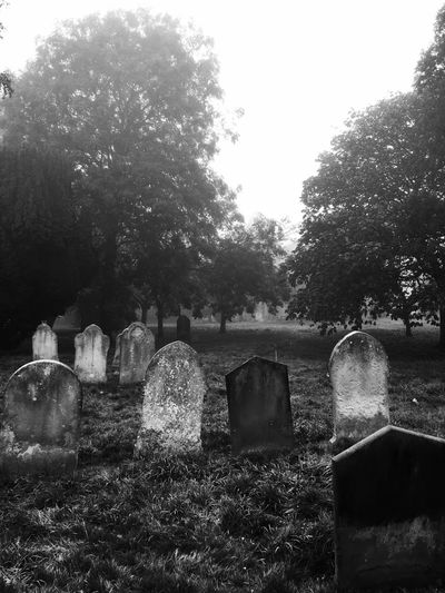 Graveyard Beauty Halloween Spooky Cold Church Blackandwhite