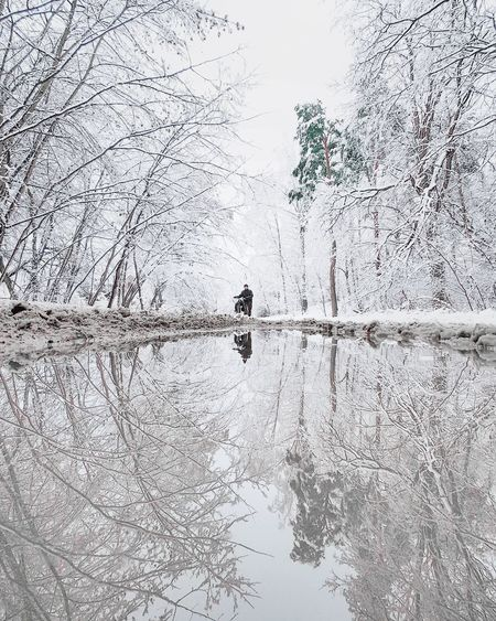 View of bare tree in lake during winter