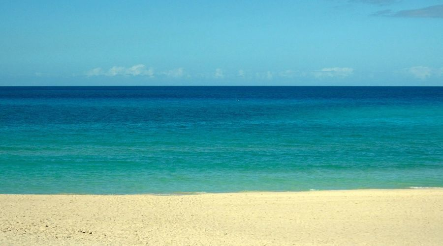 Sea Blue Beach Horizon Over Water Water Scenics Sky Outdoors Nature Sand Idyllic Travel Destinations Beauty In Nature Vacations Tranquility Clear Sky Day Sunlight No People Varadero Beach - Cuba Varadero, Cuba Varaderobeach Caribbean Caribbean Sea Copy Space