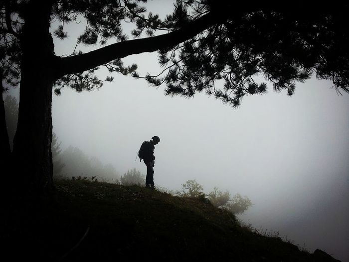 Man standing by tree against sky during foggy weather