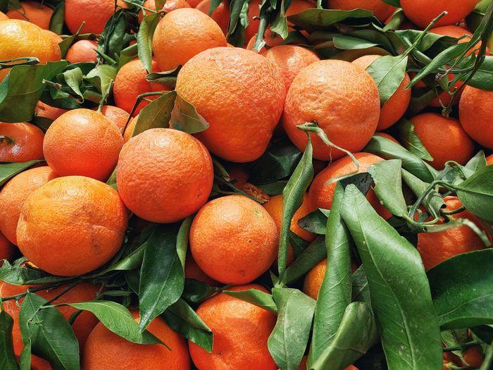 Full frame shot of orange fruits in market for sale