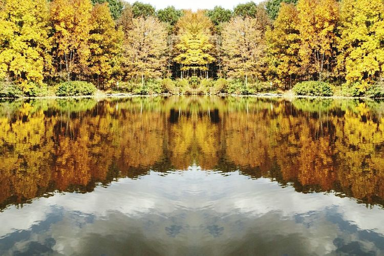 Nature Photography Waterscape My Cloud Obsession☁️ Arte_of_nature Fall Colors Symmetry In Nature Autumn Colors Fall Porn Deceptively Simple