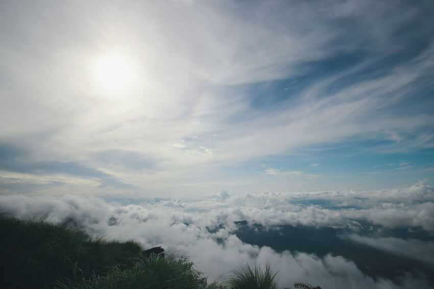 Chiang Rai Chiang Rai, Thailand Sun Rise Beauty In Nature Cloud - Sky Cloudscape Day Environment Idyllic Low Angle View Meteorology Mist Nature No People Non-urban Scene Outdoors Phucheefah Plant Scenics - Nature Sea Of Mist Sky Streaming Sun Sunlight Tranquil Scene Tranquility Tree