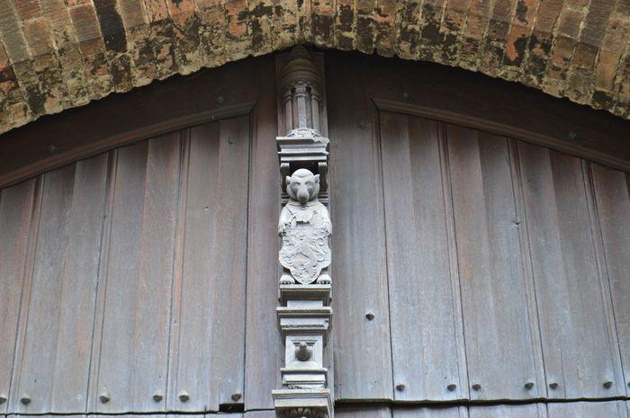 Architecture Bear Belfort Belgium Brugge Belfry Bruges Monkey