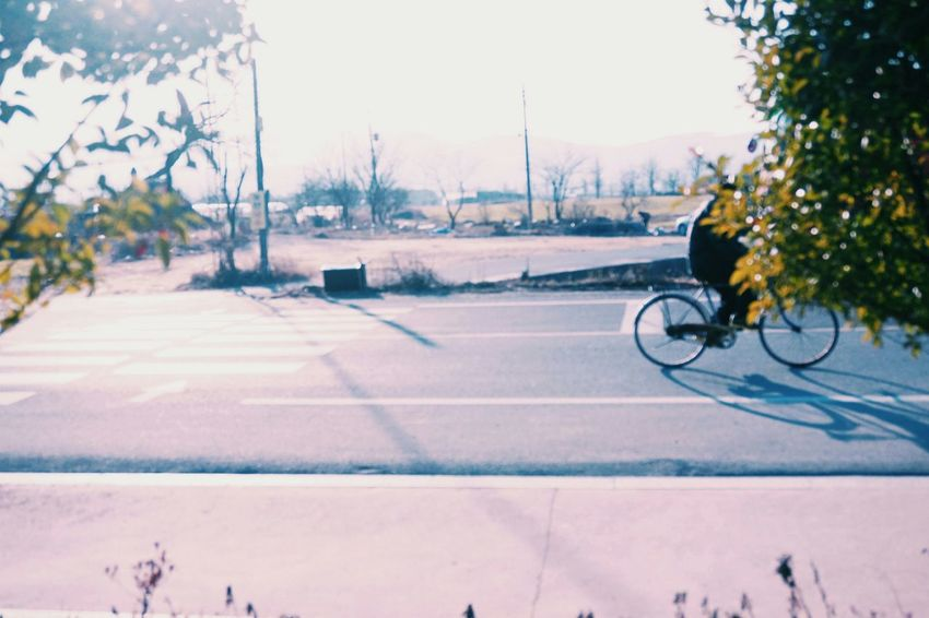 Riding Bike Landscape Taking Photo South Korea