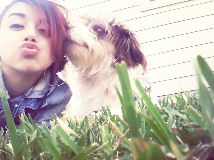I Fell Inlove With This Dog <3