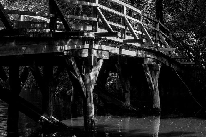 Black & White Stadtwald  Frankfurt Am Main Brücke Bridge Bridges Monochrome Blackandwhite Bw Park