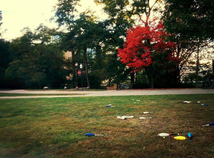 Nature juggles Colors, we juggle pins