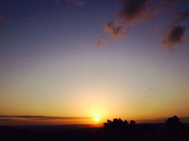 Sunset Silhouettes Mombasa Nature Enjoying The Sun
