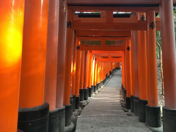 Walkway In Torii Gate