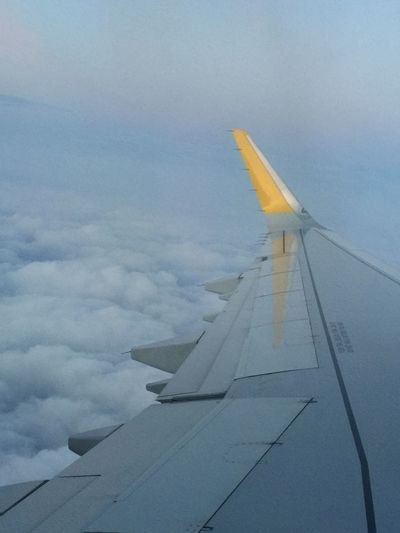 Flying yellow
