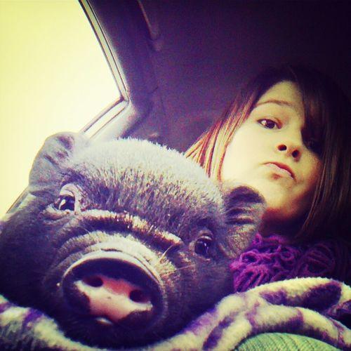 Pig Pumba Mybabysgone :/