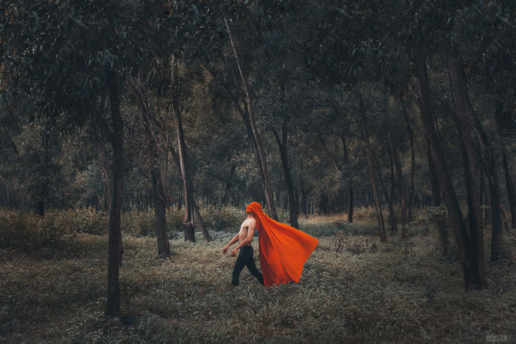 Man standing on field against trees in forest
