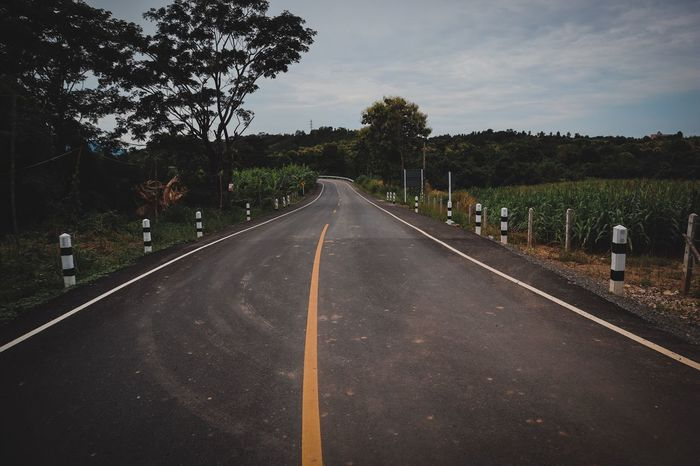 Vintage Beautiful Nature Landscape Streetphotography Road Tree The Way Forward Plant Symbol Direction Road Marking Sign Transportation Sky Nature No People Empty Road City Growth Asphalt