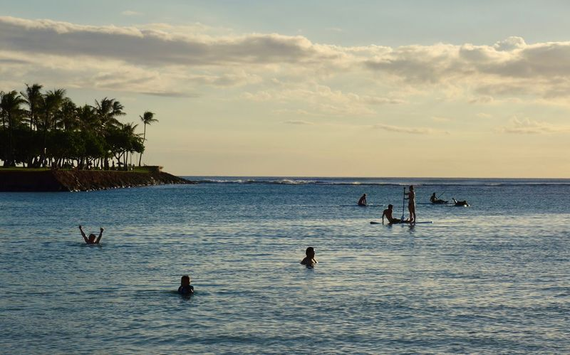 Hawaii Oahu, Hawaii Yahoo Swimming Silhouettes Sunbathing Enjoying Life Silhouettes Real People Aquatic Sports Paddleboarding Water Sea Nature Beauty In Nature Sky Scenics Cloud - Sky Horizon Over Water Outdoors Beach Day Tranquility Bird Real People Waterfront Sunset Silhouette Vacations