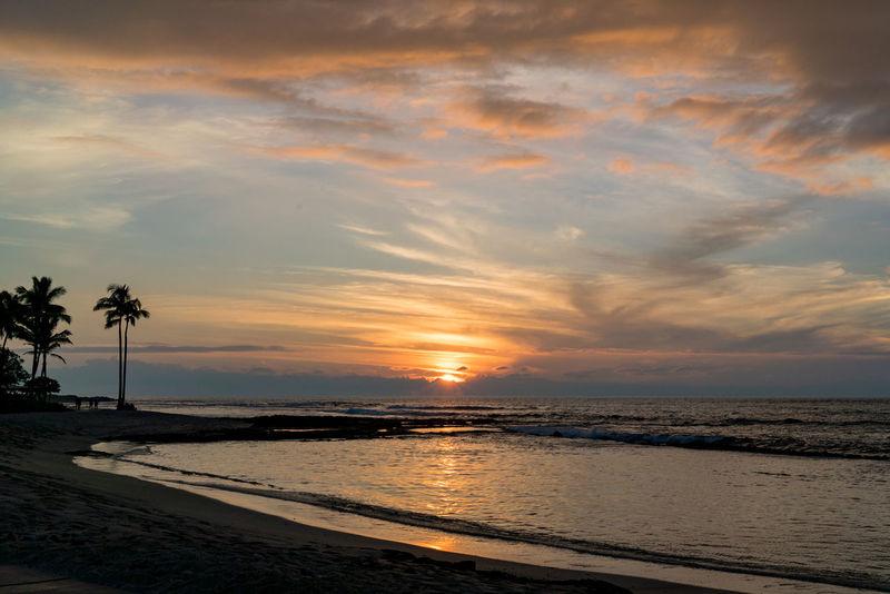 Vacations Trees Beach Water Relax Relaxing Nature Big Island Hawaii Sun Rising Sun Rise Sunset Sun Setting Sun Set